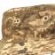 Панама Acu - Chameleon (UA-DIGITAL) 2